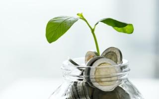 Что лучше для новичков: обычные акции или фонды ETF